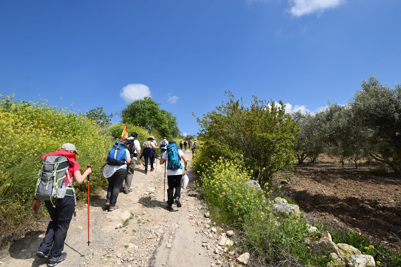 camino de jesus, peregrinaciones a tierra santa